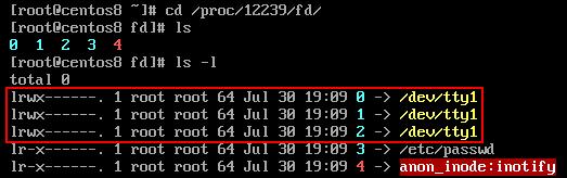 Centos 8 bash基础特性-输入输出与重定向1插图(7)